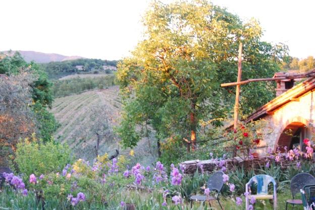 Landscape in Chianti, Tuscany