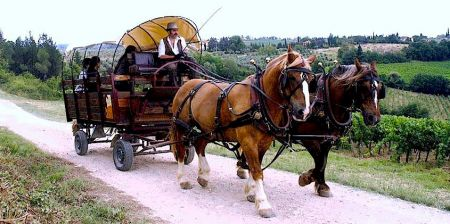 348_wagon_rides_in_tuscany