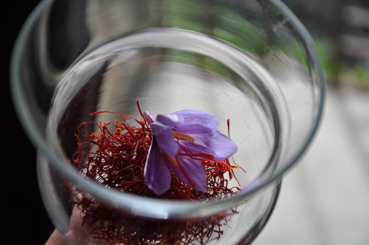 saffron 6